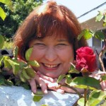 Anne Allen_ARA rose