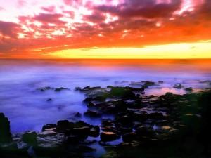 1Maui-Island