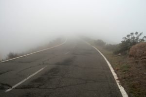 road in the mist